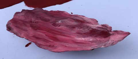 painted shell2