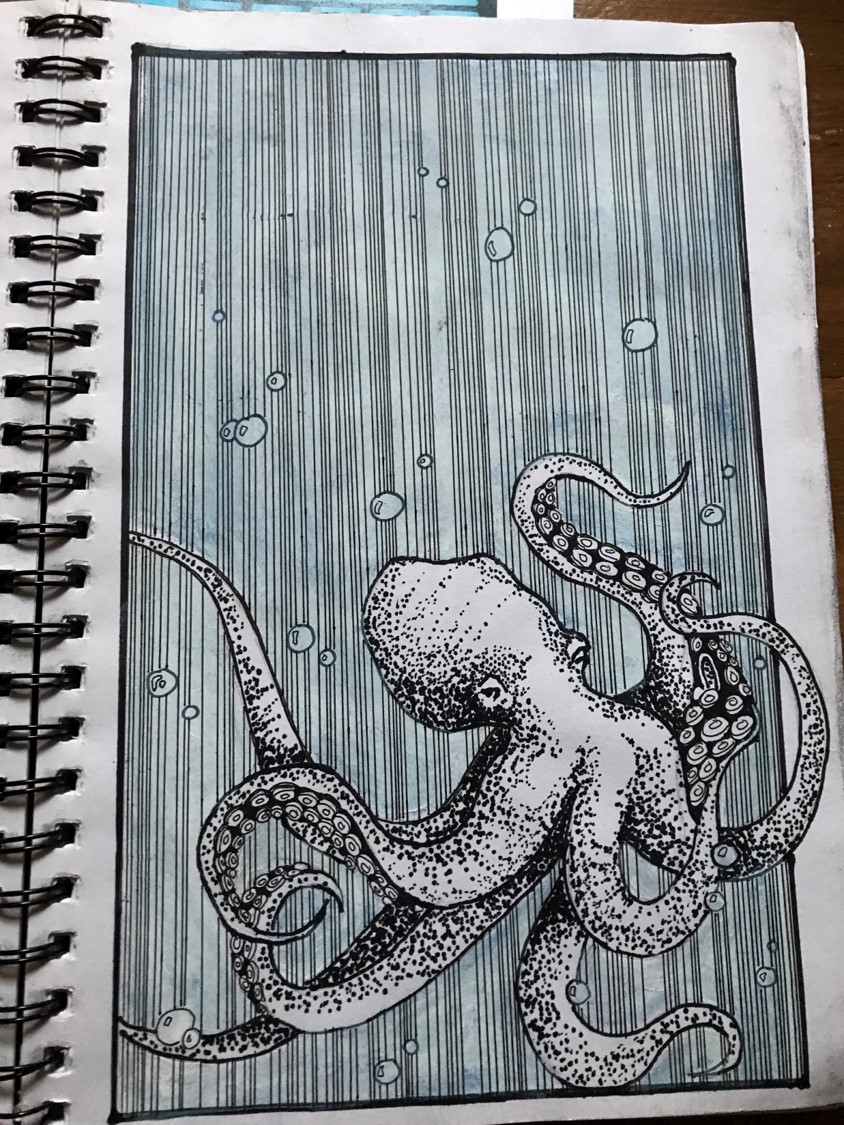 Pen and Ink Drawing of an Octopus