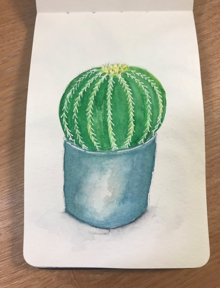 succulentsketch2