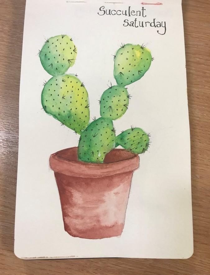 succulentsketch4