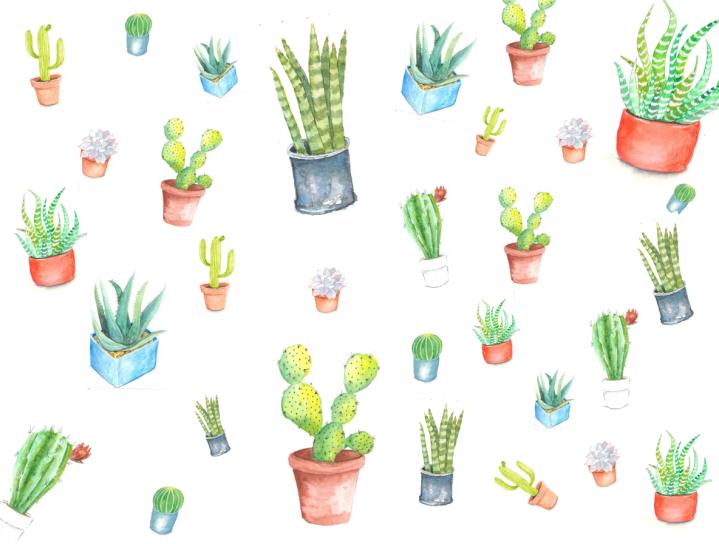 succulentdesign.png