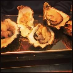 oyster starter