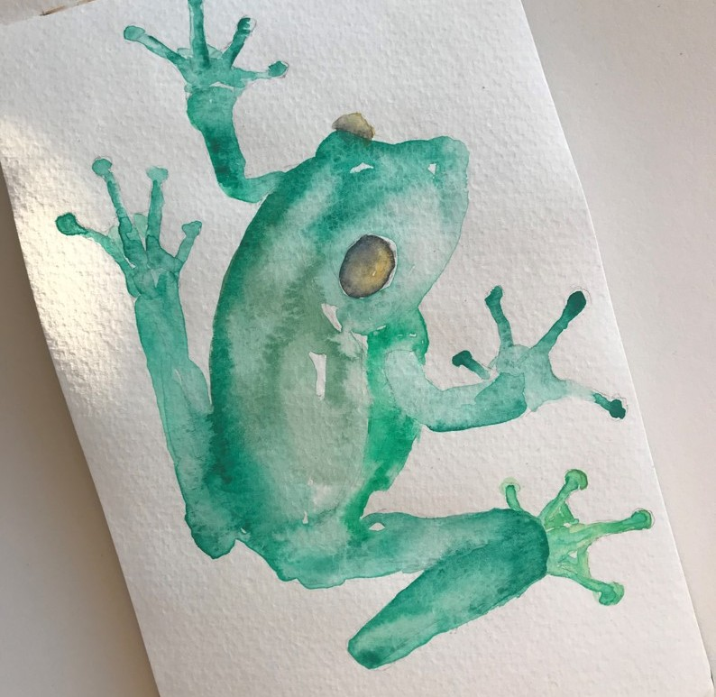 frog-illustration