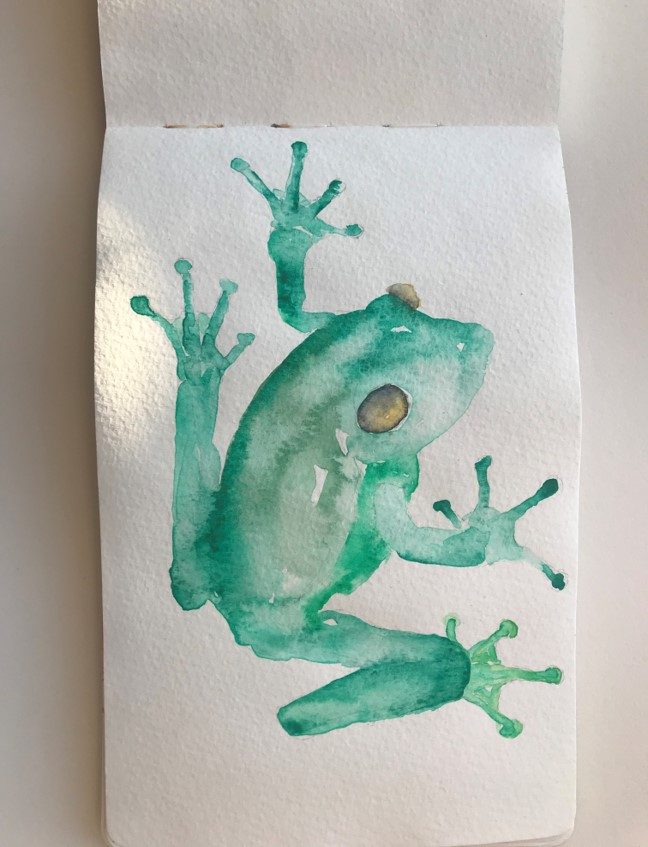 frog-watercolour